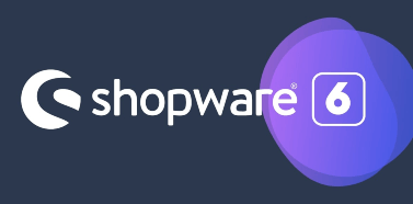 Post image for Shopware v6 Interview